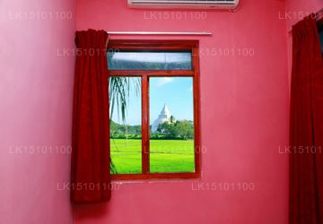 Paddy View Room