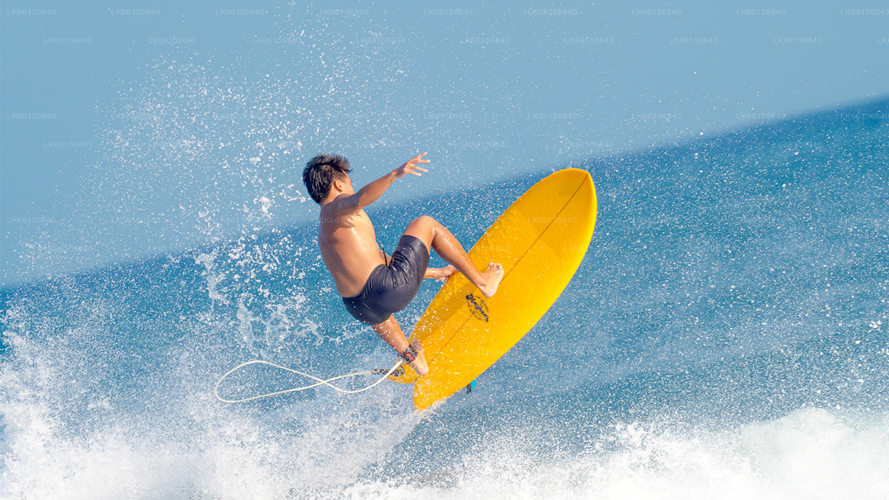 Surfing from Weligama