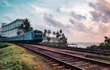 Day Tours from Mount Lavinia